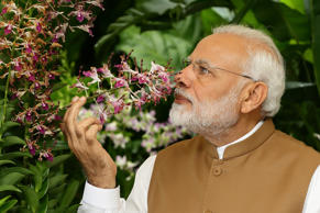 SINGAPORE - JUNE 02:  Indian Prime Minister Narendra Modi smells the orchid 'Den...