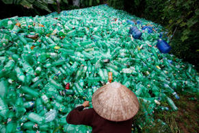 A woman sorts out recyclable plastic soft drink bottles at Xa Cau village, outsi...