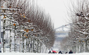 People enjoy first snow during first snowfall in Frankfurt/Main, Germany, 03 Dec...