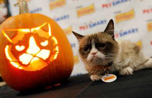 "IMAGE DISTRIBUTED FOR FRISKIES - Friskies® ""official spokescat,"" Grumpy Cat, com..."