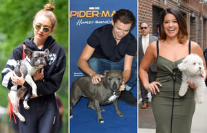 Bow Wow! Stars with their pet pals